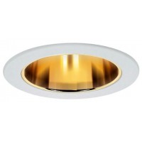 """4"""" Recessed lighting clear glass lens specular gold reflector white shower trim"""