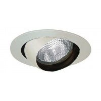 "4"" Recessed lighting chrome eyeball trim R/Par 20 lamp"