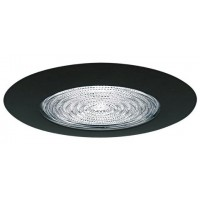 "6"" Recessed lighting fresnel lens black shower trim"